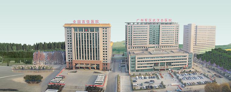 广州军区武汉总医院